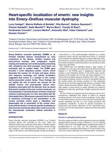 new insights into Emery–Dreifuss muscular dystrophy - Human ...