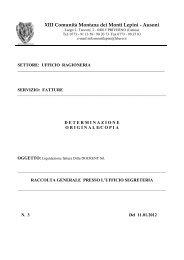 XIII Comunità Montana dei Monti Lepini - Ausoni - Comunita ...