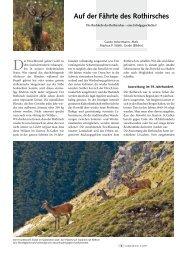 Auf der Fährte des Rothirsches - Informationen zu Natur, Jagd und ...