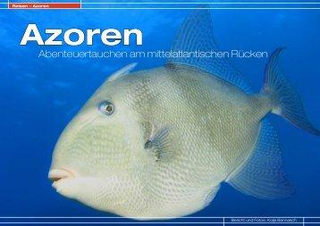 Azoren - DiveInside