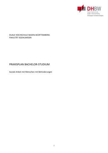 Praxisplan: Soziale Arbeit