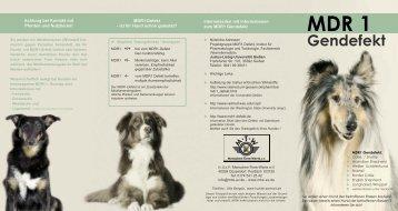 MDR1 Gendefekt - Bassumer Hundetreff