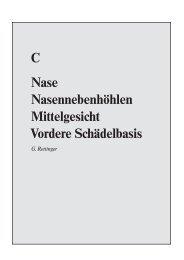 C Nase Nasennebenhöhlen Mittelgesicht Vordere Schädelbasis
