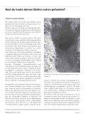 BERGKNAPPE 119 - Bergbau Silberberg - Seite 5