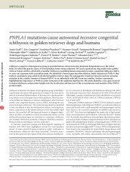 PNPLA1 mutations cause autosomal recessive congenital ichthyosis ...