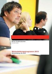 Weiterbildungsprogramm 2013 - Soziale Arbeit - Berner ...