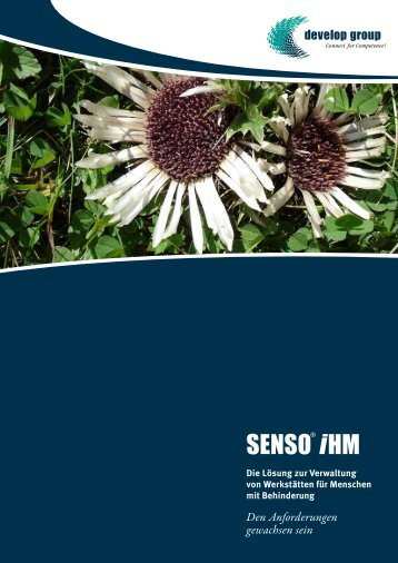 SENSO iHM - develop group