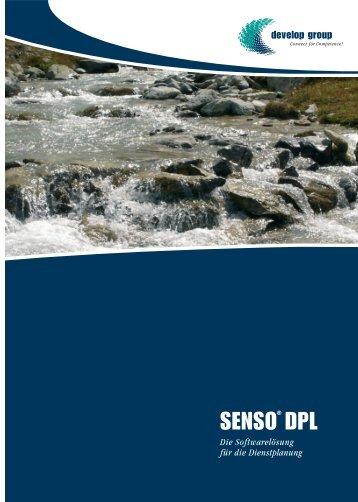 SENSO® DPL - develop group