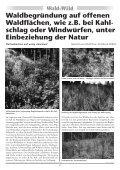 Wald+Wild 71-Dez.2010 Druck - Steirischer Jagdschutzverein - Seite 6
