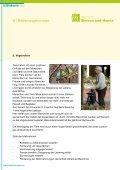 """Mappe """"Simeon und Hanna"""" - Diakonie Varel - Seite 6"""