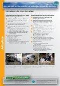 Nur gesunde Kälber werden zu leistungsstarken Milchkühen! - Seite 2