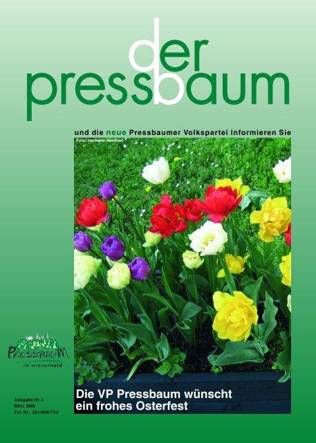 Kontaktanzeigen Pressbaum   Locanto Dating Pressbaum