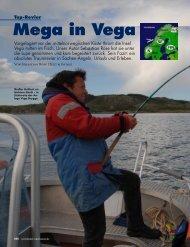Mega in Vega - Din Tur AS