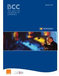 Romania Market Brief - East Midlands International Trade ...