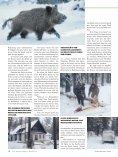 NEU - Jagen Weltweit - Seite 3