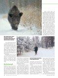 NEU - Jagen Weltweit - Seite 5