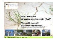 Die Deutsche Anpassungsstrategie - Kompetenzzentrum ...
