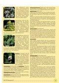 Therapie - phytotherapie.co.at - Seite 5