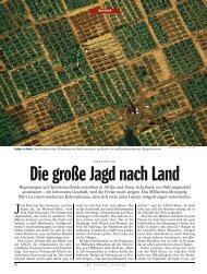Die große Jagd nach Land - Food Crisis and the Global Land Grab