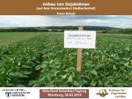 Anbau von Sojabohnen (.pdf) - Naturland