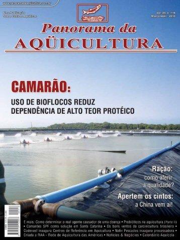 Baixar PDF - Acqua & Imagem