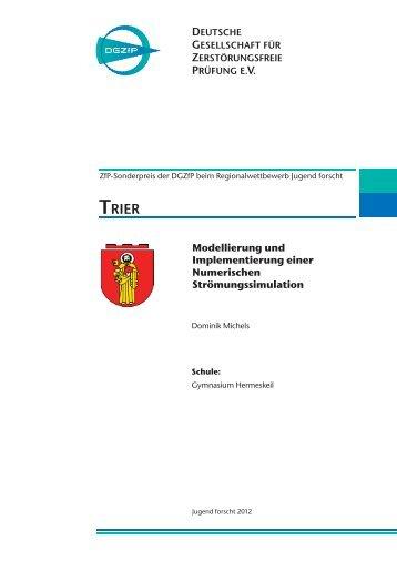 Modellierung und Implementierung einer Numerischen ... - DGZfP