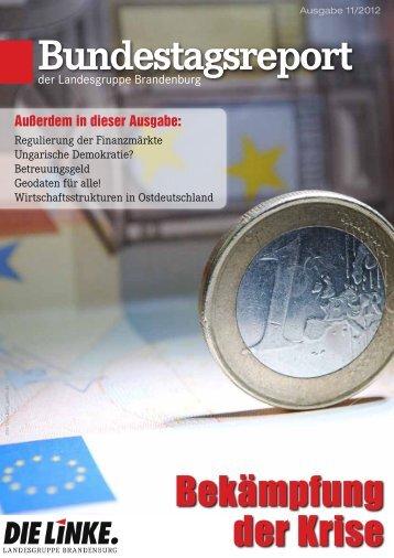 Bundestagsreport 11/2012 - Dagmar Enkelmann