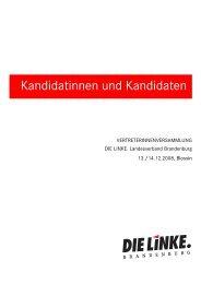Kandidatenheft - Die Linke. Brandenburg
