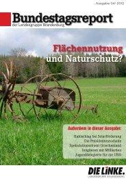 Bundestagsreport 04/2012 - Dagmar Enkelmann