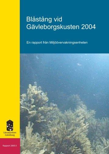 Blåstång vid Gävleborgskusten 2004 - Länsstyrelserna