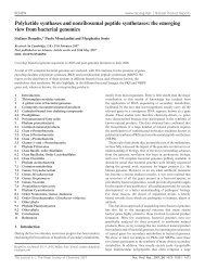 Polyketide synthases and nonribosomal peptide ... - Staff Home Pages