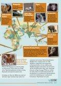 Der illegale Handel mit Wildtieren - Seite 5
