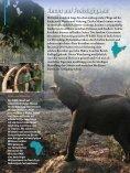Spender - International Fund for Animal Welfare - Seite 6