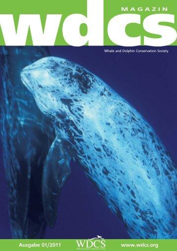 Ausgabe 01/2011 www.wdcs.org MAGAZIN - WDCS Deutschland