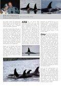 Ausgabe 01/2011 www.wdcs.org MAGAZIN - WDCS Deutschland - Seite 5