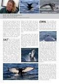 Ausgabe 01/2011 www.wdcs.org MAGAZIN - WDCS Deutschland - Seite 6