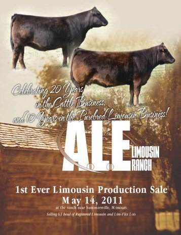 1st Ever Limousin Production Sale May 14, 2011 - Designs by Arin