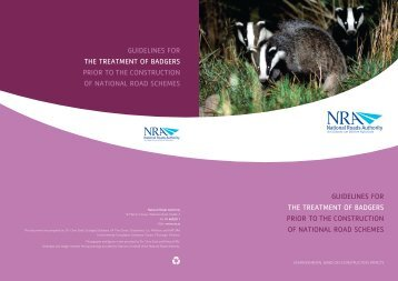 Guidelines for the Treatment of Badgers Prior to - National Roads ...
