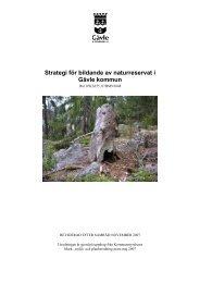 Strategi för bildande av naturreservat i Gävle kommun