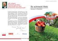 So schmeckt Wels - Genussland Oberösterreich