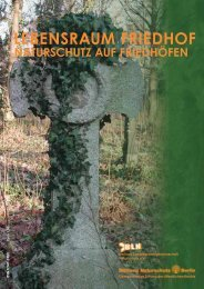 LEBENSRAUM FRIEDHOF - Stiftung Naturschutz Berlin