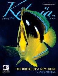 Ilo Ia - Waikiki Aquarium