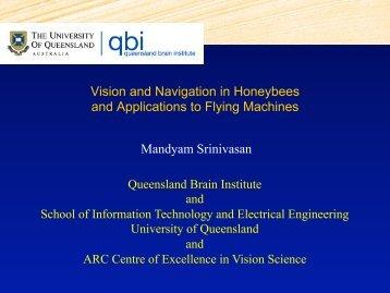 Vision and Navigation in Honeybees - UQ Robotics Design Lab ...