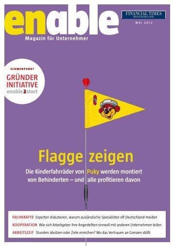 enable - Flagge zeigen - Financial Times Deutschland