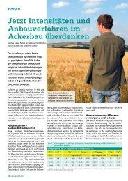 Jetzt Intensitäten und Anbauverfahren im Ackerbau überdenken - DSV