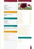 HausZeitung - WKZ Regine-Hildebrandt-Haus - Seite 3
