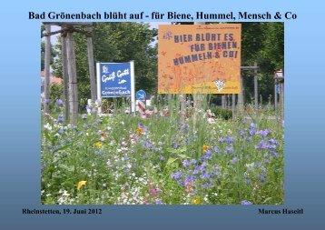 Bad Grönenbach blüht auf - für Biene, Hummel, Mensch & Co