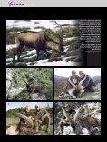S panien - Jagen Weltweit - Seite 3