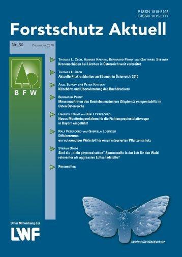 Kronenschäden bei Lärchen in Österreich weit verbreitet - BFW