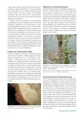 Kronenschäden bei Lärchen in Österreich weit verbreitet - BFW - Seite 4